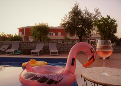Flamingo at the pool of QdL